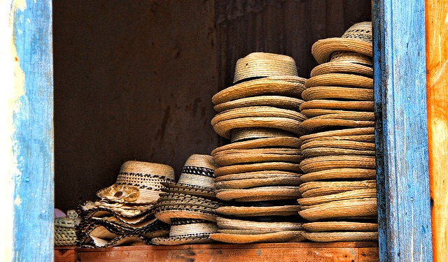 sortes de chapeau de Panama